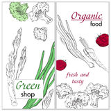 Healthy organic food. Green shop vertical banner Royalty Free Stock Image
