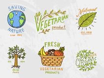 Healthy Organic food logos set or labels and elements for Vegetarian and Farm green natural vegetables products, vector. Illustration. badges healthy life Royalty Free Stock Photo