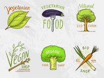 Healthy Organic food logos set or labels and elements for Vegetarian and Farm green natural vegetables products, vector. Illustration. badges healthy life Stock Images