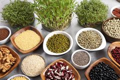 Healthy organic food stock photo