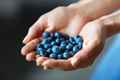 Healthy Organic Food. Woman Hands Full Of Fresh Ripe Blueberries Stock Image