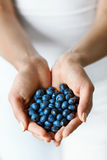 Healthy Organic Food. Woman Hands Full Of Sweet Ripe Blueberries Stock Photos