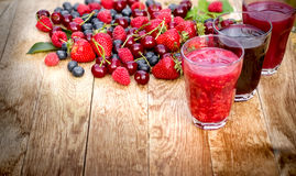 Healthy organic forest fruits - berry fruits Royalty Free Stock Images