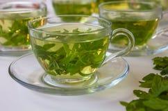 Healthy organic fresh herbs tea : Spearmint, lemon verbena and sage stock image