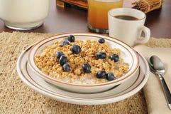 Organic granola Stock Image