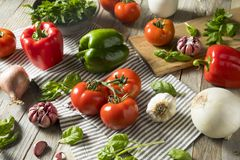 Healthy Organic Italian Herbs and Vegetables. Healthy Organic Italian Herbs and Vegetable Ingredients stock photos
