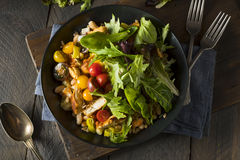 Healthy Organic Mediterranean Buddha Farro Grain Bowl. With Lettuce and Chicken Royalty Free Stock Image