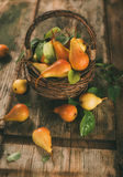 Healthy organic pears stock photos