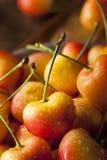 Healthy Organic Rainier Cherries. In a Bowl Stock Photos