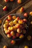 Healthy Organic Rainier Cherries. In a Bowl Royalty Free Stock Photos