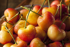 Healthy Organic Rainier Cherries. In a Bowl Stock Image