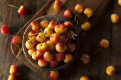 Healthy Organic Rainier Cherries. In a Bowl Stock Images