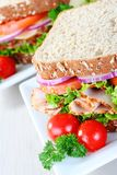 Healthy organic sandwich Royalty Free Stock Image