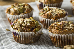Healthy Organic Seed and Blueberry Muffins Royalty Free Stock Image