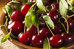Healthy Organic Sour Cherries Royalty Free Stock Images