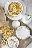 Fresh organic soy products:soy milk, soy yogurt, soy chese tofu. Healthy organic soy products: soy milk, soy yogurt, soy chese tofu and soy beans Stock Images