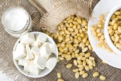 Fresh organic soy products:soy milk, soy yogurt, soy chese tofu. Healthy organic soy products: soy milk, soy yogurt, soy chese tofu and soy beans Stock Photos