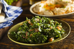 Healthy Organic Tabbouleh Salad Stock Photo