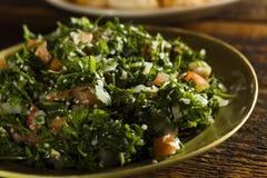 Healthy Organic Tabbouleh Salad Stock Image