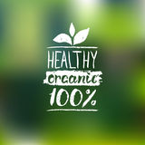 Healthy Organic vector logo with handwritten lettering. Bio sign,badge for vegetarian restaurant,cafe,product packaging. Royalty Free Stock Photo