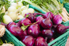 Healthy and organic vegetables at farmers market. Organic red onion and other vegetables at farmers market. Healthy local food Stock Image