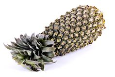 A healthy organic whole spiny pineapple fruit royalty free stock image