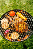 Healthy outdoor living summer BBQ Royalty Free Stock Photo