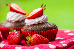 Healthy picnic of coconut chocolate cupcakes with strawberries. Healthy treat of paleo sugar, gluten and dairy free coconut chocolate cupcakes with strawberries stock photos