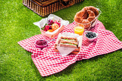 Healthy picnic for a summer vacation Royalty Free Stock Images