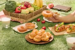 Healthy picnic for a summer vacation at the park on the grass. royalty free stock photo