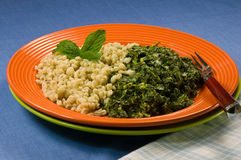 Healthy Plate, Barley and Collard Greens Stock Image