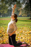 Healthy pregnancy - exercising outdoor Royalty Free Stock Photo