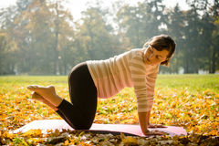 Healthy pregnancy - exercising outdoor Royalty Free Stock Images