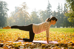 Healthy pregnancy - exercising outdoor Stock Images