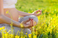 Healthy pregnant woman doing yoga in nature outdoors Royalty Free Stock Photos
