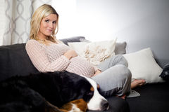 Healthy pregnant woman lying on a couch with her dog. Royalty Free Stock Photography