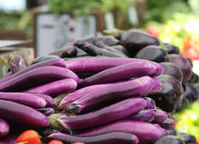 Healthy purple eggplant. Purple vegetable eggplant at the outdoor farmers market Royalty Free Stock Photo