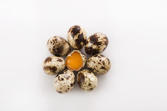 Healthy quail eggs. Some quail eggs and yolk between its on the brown wooden table background Stock Images