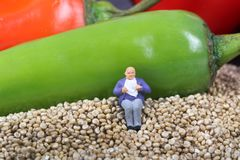 Healthy quinoa Stock Image