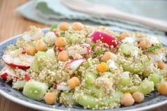 Healthy Quinoa Salad Royalty Free Stock Photos