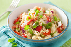 Healthy quinoa salad with tomato cucumber onion chives Royalty Free Stock Photography