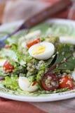 Healthy quinoa salad with tomatoes, avocados, eggs, herbs Stock Photos