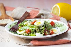 Healthy quinoa salad with tomatoes, avocados, eggs, herbs. Lettuce, lemon, diet dish Stock Images
