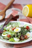 Healthy quinoa salad with tomatoes, avocados, eggs, herbs Royalty Free Stock Image