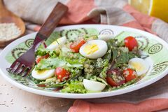 Healthy quinoa salad with tomatoes, avocados, eggs, herbs. Lettuce, lemon, diet dish Royalty Free Stock Photography