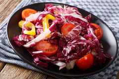 Healthy radicchio salad with tomatoes and pepper closeup. horizo. Healthy radicchio salad with tomatoes and pepper closeup on a plate. horizontal Royalty Free Stock Photography