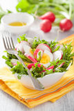 Healthy radish salad with egg and green leaves Royalty Free Stock Photography