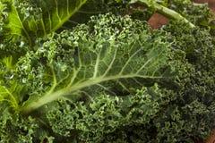 Healthy Raw Green Kale Stock Photos