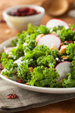 Healthy Raw Kale and Cranberry Salad. With Cheese and Nuts Stock Photo
