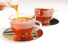 Healthy red bush tea from South Africa Royalty Free Stock Photos